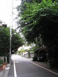 Jiyugaoka-Meguro-ku area