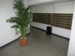 entrance hall 2