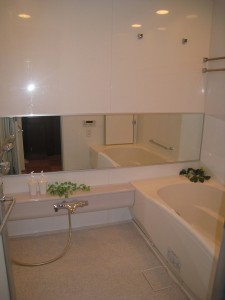 Takanawa the Residence bath room (Minato-ku, Tokyo)